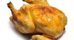 POLLAST, espècies per a pollastres al ast