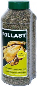 Pollast-tradicional-bote