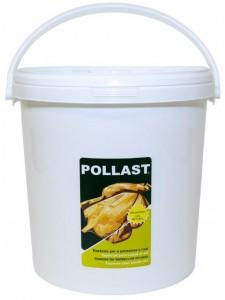 Pollast-tradicional-cubo